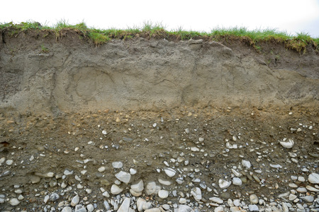 A cutting shows layers of topsoil, sub soil and shingle in typical West Coast farmland, South Island, New Zealand Stok Fotoğraf