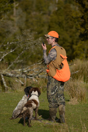 gamebird: A hunting guide relays a radio message during a pheasant hunt