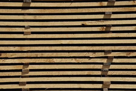 radiata: Piles of  timber cut from Pinus radiata wait their turn for despatch from the sawmill