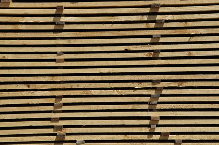 despatch: Piles of  timber cut from Pinus radiata wait their turn for despatch from the sawmill