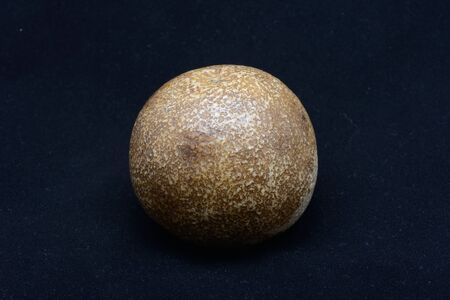 A remarkable fossil of an orange from the citrus growing area of Gayndah, Queensland, Australia, which cannot be more than 160 years old. The object may be a cast of an orange, must it is still proof that fossils do not need millions of years to form. Fro