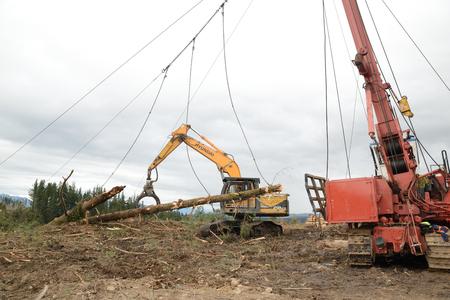 KUMARA, NEW ZEALAND, SEPTEMBER 20, 2017: A digger driver captures a log at the top of the hauler area at a logging site near Kumara, West Coast, New Zealand Editorial