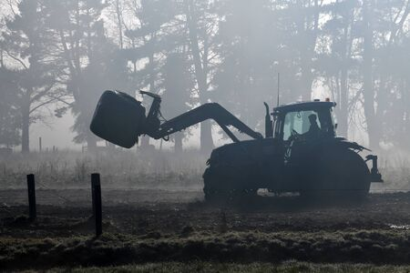 A farmer directs his front end loader through the fog to a feeding out paddock on a West Coast dairy farm, New Zealand 版權商用圖片