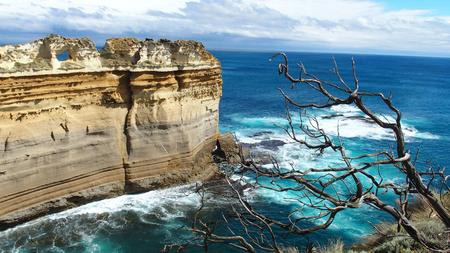 ard: Razorback limetone Cliff, Great Ocean Road, Australia