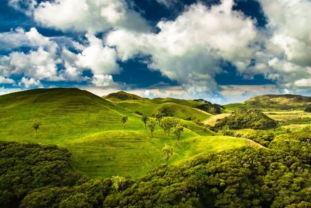 green hills near golden bay, south island, new zealand 版權商用圖片
