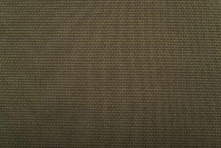 적합: closeup of a green outdoor textile suitable as a texture