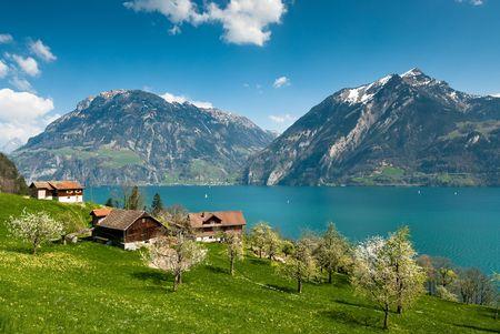 spring scenery at lake lucern, switzerland