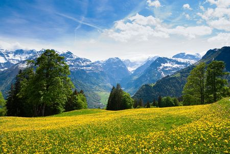 Scenic view from Braunwald, Switzerland in spring.