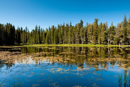 tranquille: siesta lake, yosemite national park, california, usa