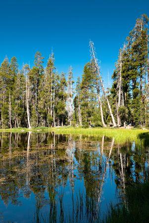 siesta lake, yosemite national park, california, usa