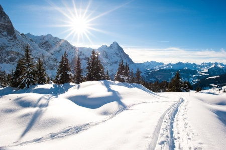 Panoramic scenery above Grindelwald, Switzerland in winter