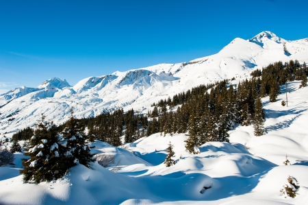 Winter panorama above Grindelwald from Grosse Scheidegg with Faulhorn and First, Switzerland Stock Photo - 13646349