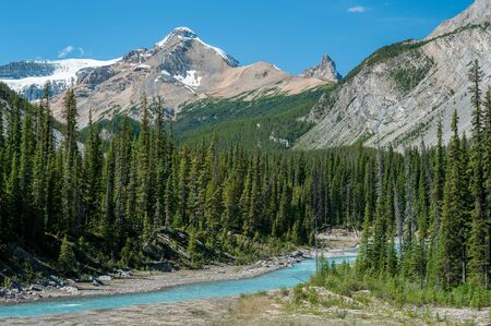 River on the icefield parkway in Jasper National Park, Alberta, Canada