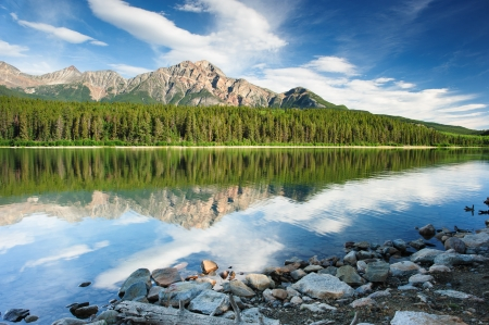 Patricia Lake panorama, Jasper national park, Canada photo