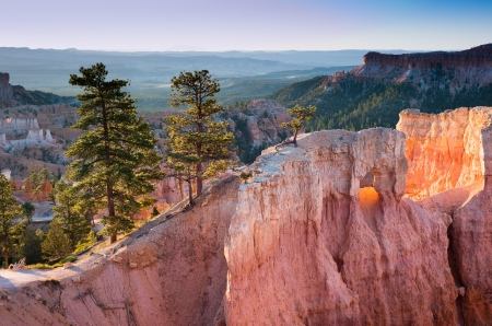 bryce: Glowing standstone cliffs at sunrise in Bryce Canyon National Park, Utah, USA
