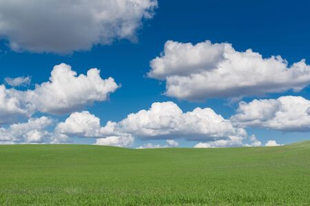 cloudy sky: Green Summer Hills with Cloudy Blue Sky. Scenic Summer Landscape.