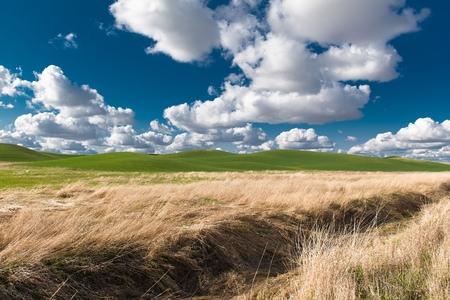 butte: Scenic Summer Landscape. Washington Steptoe Butte Scenery Stock Photo
