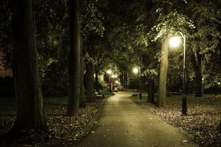 Old Park Night Scenery. Early Fall in the City Park.