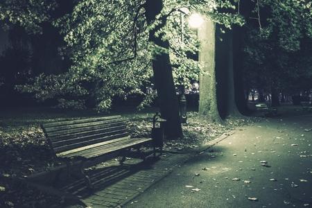 Park Bench. Night in the Park. Urban Scenery After Dark. Archivio Fotografico