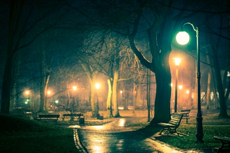 Dark Rainy City Park. Night Time Rain Shower in the Illuminated Park. Standard-Bild