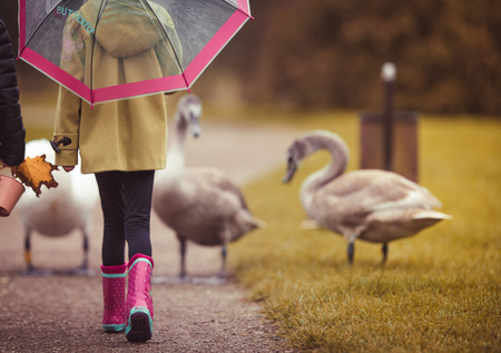Girl walking at the park. Swans at the background. Reklamní fotografie