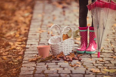 Little girl standing with chestnuts, basket and leafs. Autumn theme.