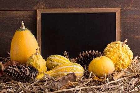 thanksgiving - different pumpkins on straw
