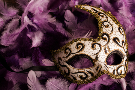 masquerade: carnival mask on light and dark purpe feathers