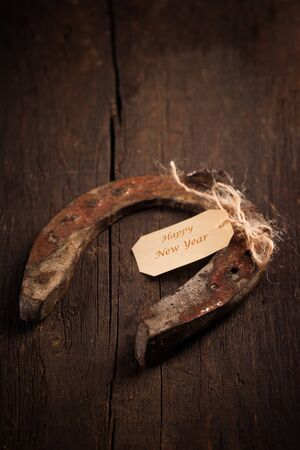 Talisman: horse shoe as talisman for new year