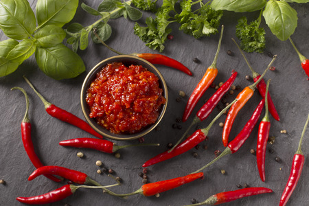 chili sauce in a bowl with fresh chili and herbs Standard-Bild