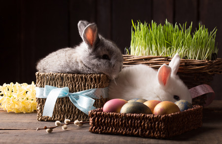 two cute easter bunny with colored eggs over wooden background Stock Photo - 97916255