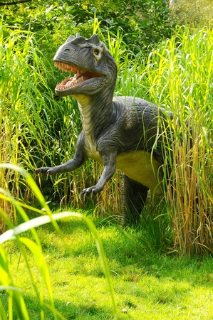 A model Allosaurus Dinosaur hunting in the long grass Stock Photo