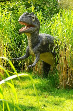 A model Allosaurus Dinosaur hunting in the long grass Stock Photo