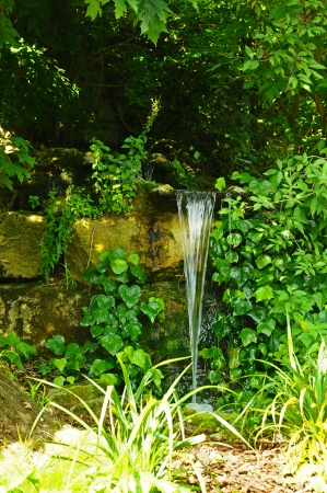 A small waterfall cascading down an over-grown wall