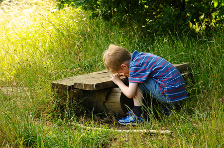 a young boy exploring nature outside