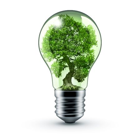 symbiosis: light bulb whith tree inside - green energy!