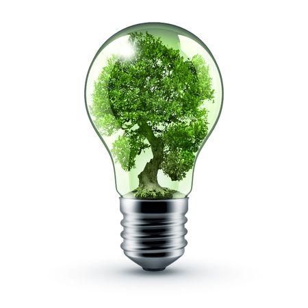 light bulb whith tree inside - green energy!