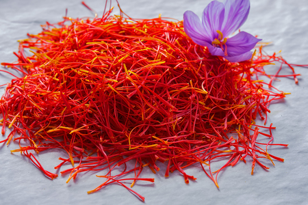 """Fiori di raccolta dello zafferano. Crocus sativus, comunemente noto come il raccolto del """"croco di zafferano"""" Archivio Fotografico"""