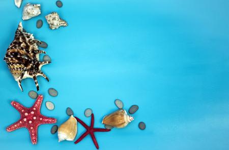 Aqua background with starfish and seashells Stock Photo