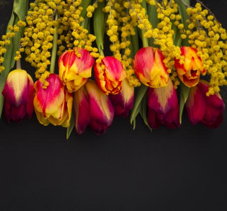 tulipani da cartolina e mimose su sfondo nero con spazio di copia Archivio Fotografico