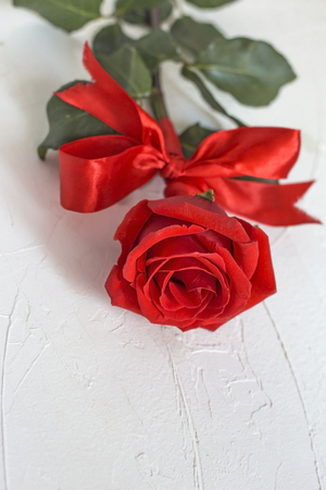 Red rose with red bow on white textured background.