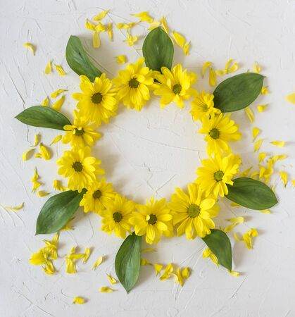 Wreath of yellow chrysanthemum flowers on a white background. Easter, spring, summer concept. Flat lay, top vi Standard-Bild - 129255226