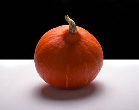 one orange pumpkin on a black and white background. Reklamní fotografie