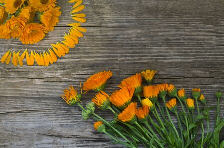 flat layout, concept of passing life Flowers reach for the Sun, on a wooden surface. Imagens - 133846587