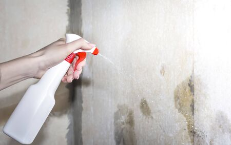 girl wetting the walls with water to remove the paper from the wall. Imagens - 133846605