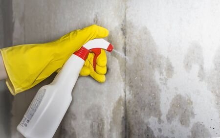 pest control, a person sprays a remedy for mold and other pests on the walls of the house. Imagens - 133846606
