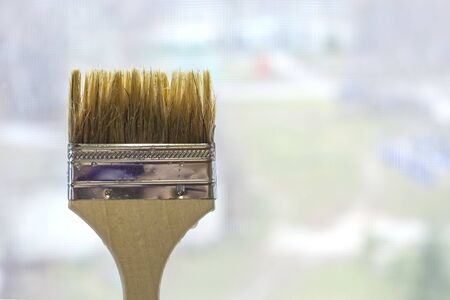 brush on the background of the yard of a residential building, the concept of renovation in residential areas. Imagens - 133846611