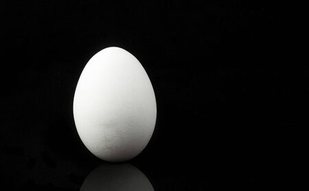 upright white egg isolated on black background with copy space.