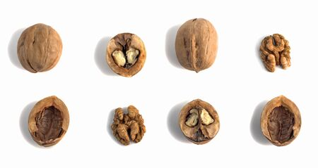 the shells and kernels of walnuts are laid out in rows horizontally on a white background