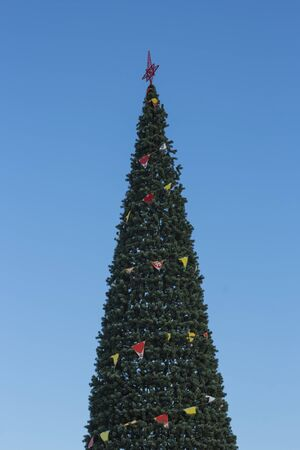 city Christmas tree in the sunlight of a winter day against a blue sky.